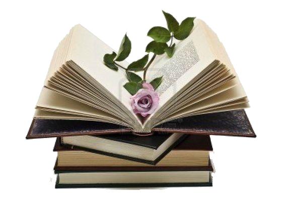 Livre Ouvert Et Fleur